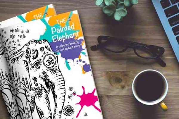 The Painted Elephant Colouring Book at the Samui Elephant Haven