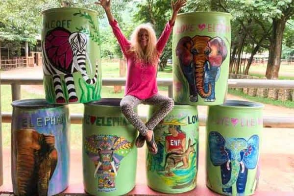 Some Beautiful Art Bins at the Samui Elephant Haven