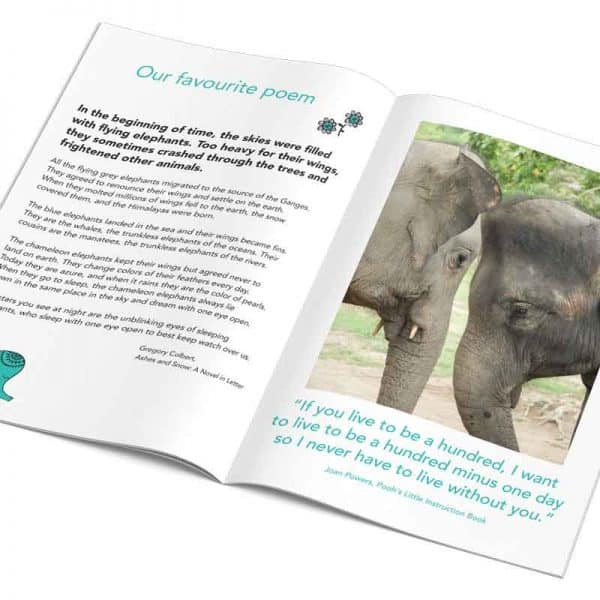 THE PAINTED ELEPHANT PDF 8