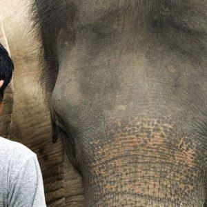 Maew Suriya, the founder of Samui Elephant Haven