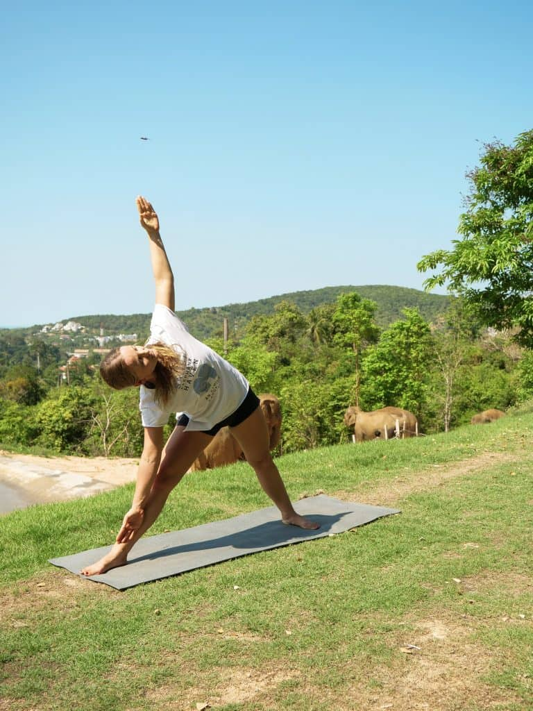 SAMUI ELEPHANT HAVEN OFFERS PEACEFUL YOGA AND MEDITATION CLASSES 1