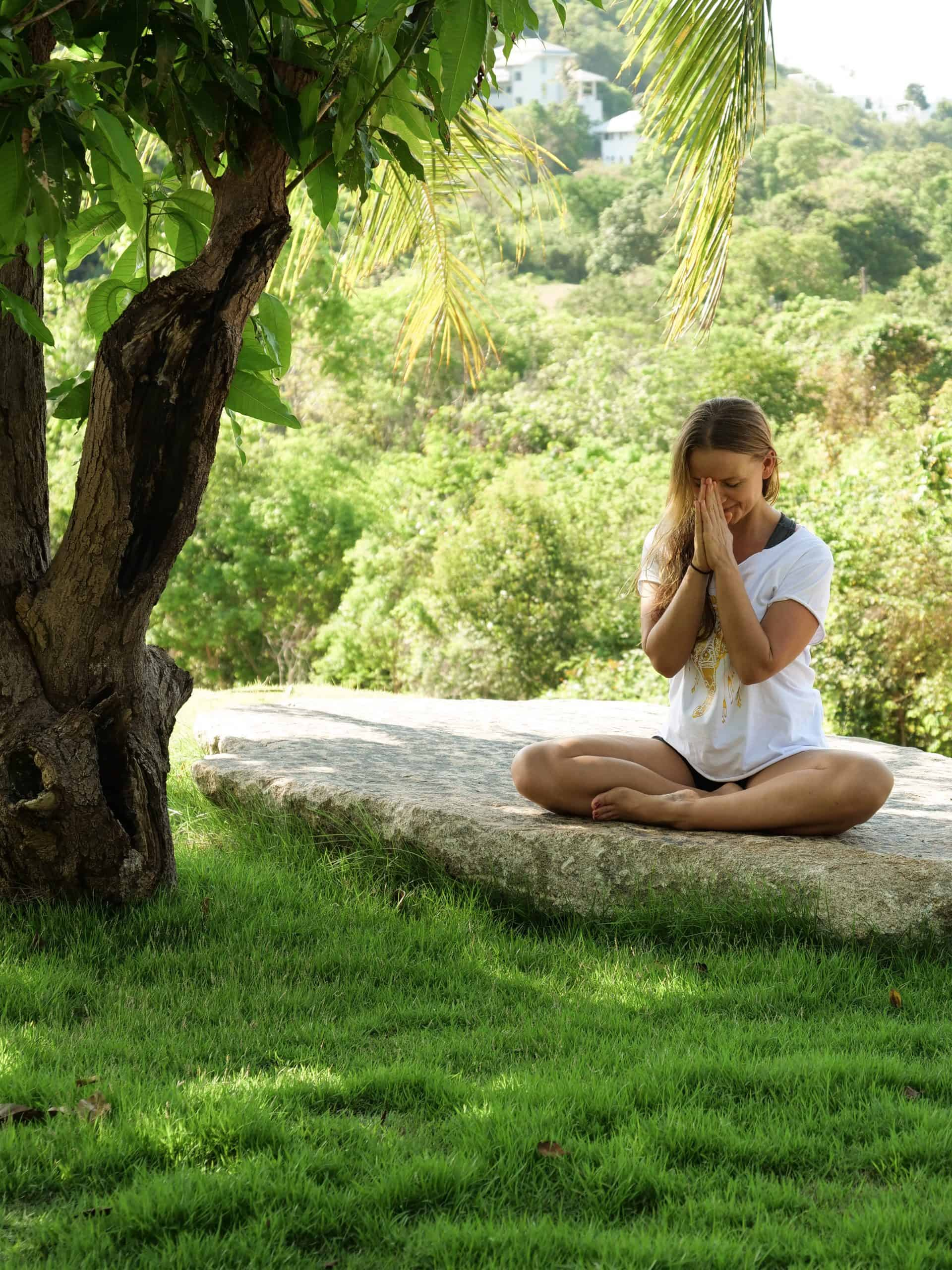 SAMUI ELEPHANT HAVEN OFFERS PEACEFUL YOGA AND MEDITATION CLASSES 2