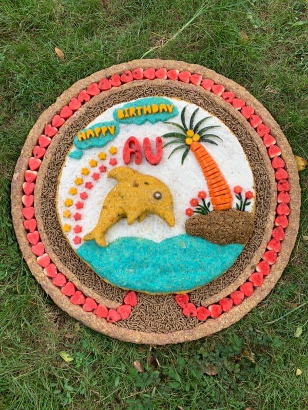 Large Elephant Cake 2