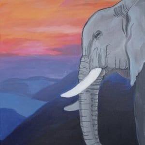 #28 Elephant's Eve (Aged 10)