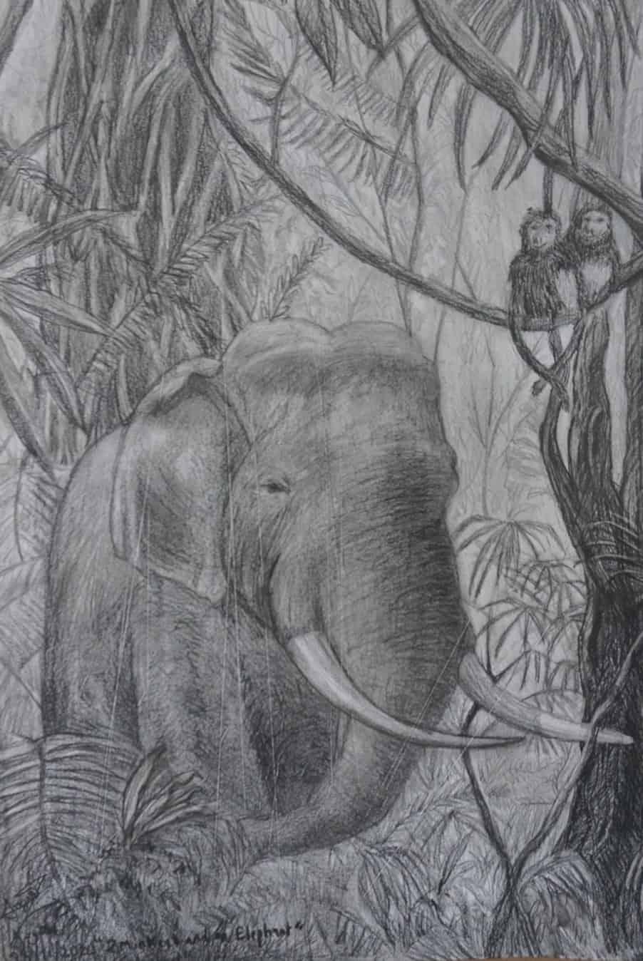 #4 2 Monkeys and an Elephant (Aged 12)