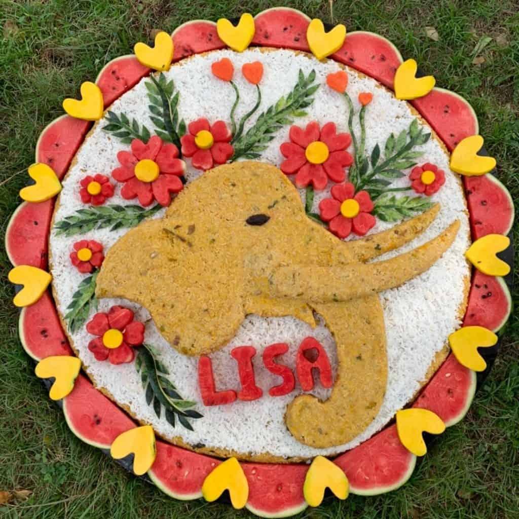 Elephant Cakes 12