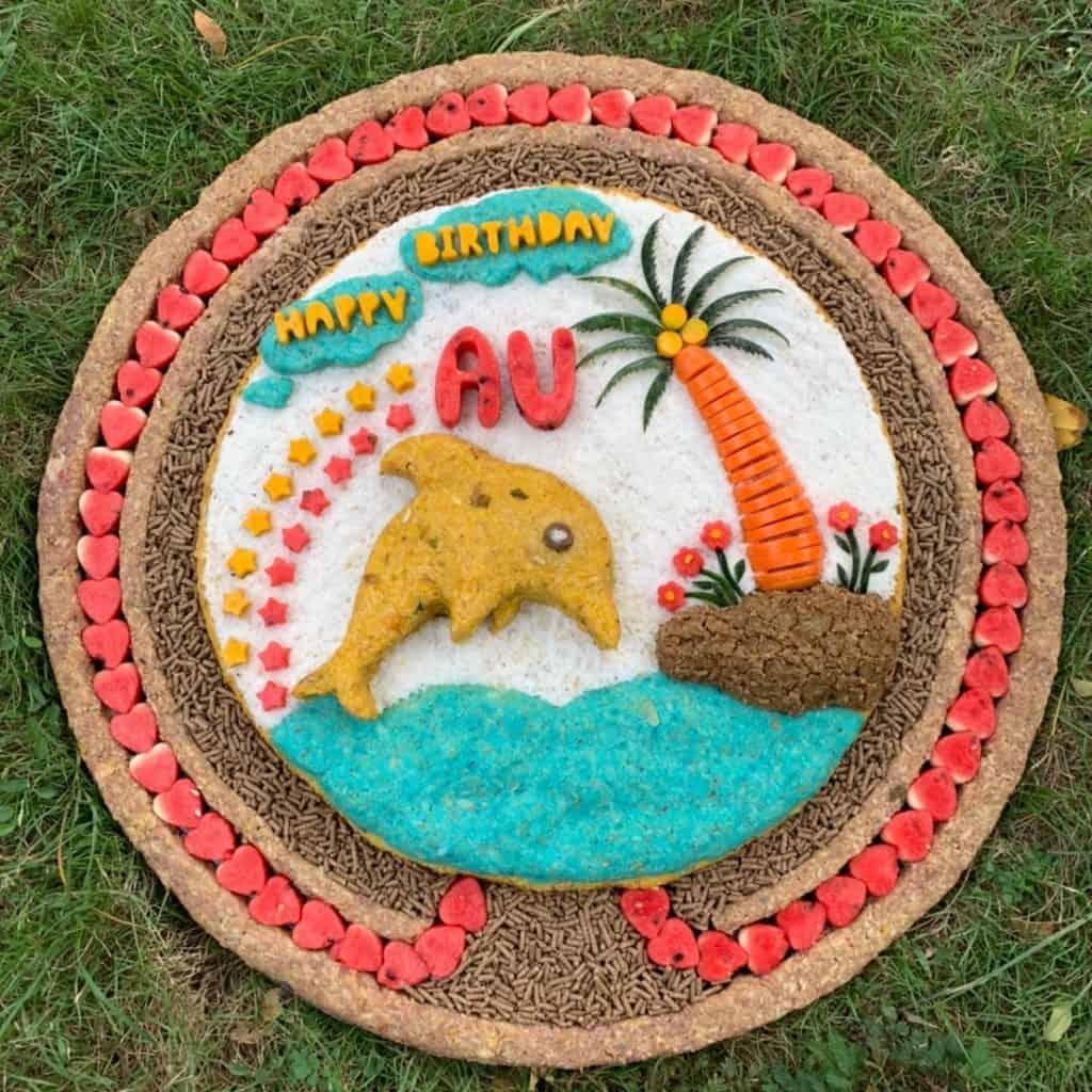 Elephant Cakes 9